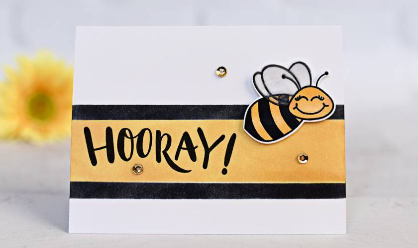 Honey Bee News!